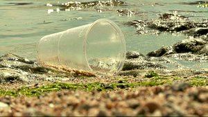 nedsmutsning-i-havet